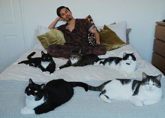 【続報】ベットの下で見知らぬ猫が4匹の子猫を出産していた件を報告した男性の2年後