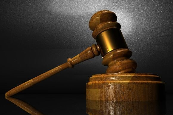 21匹の猫を殺した男、懲役16年の判決が下される(アメリカ)