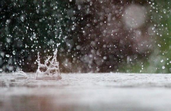 嫌いじゃない。雨が降った後に地面から漂う独特のニオイの正体は?(オーストラリア研究)