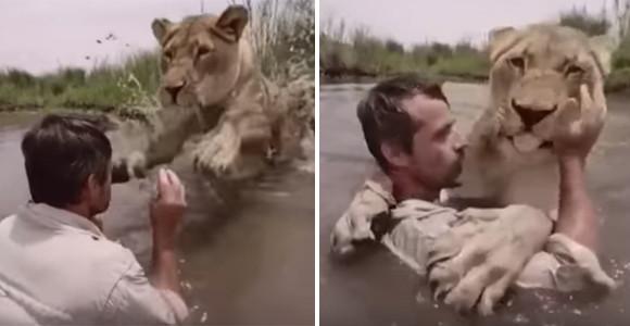 育児放棄された子ライオンの親代わりとなった男性。両者の間にある絆は想像以上に屈強だった。
