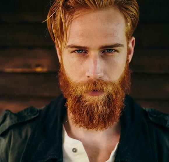 beard11_e
