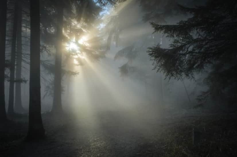 sunbeam-1547273_640_e