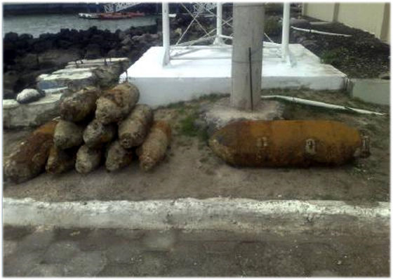 ガラパゴス爆弾