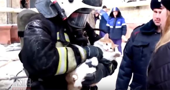 火事の煙で心肺停止になっていた猫に酸素ボンベで救命処置。危機一髪でその命を救ったロシアの消防士たち