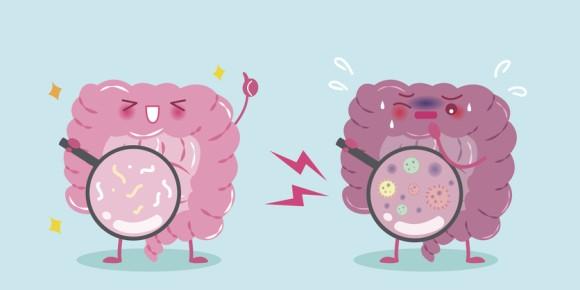 人付き合いが苦手?腸内細菌が乏しいのかもしれない。人の性格と腸内細菌の不思議な関係(英研究)