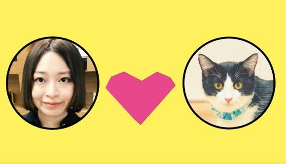 自分に似ている猫を紹介してくれる、猫マッチングアプリ「NYAPPLING(ニャップリング)」が登場