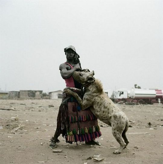african_wild_pets_14