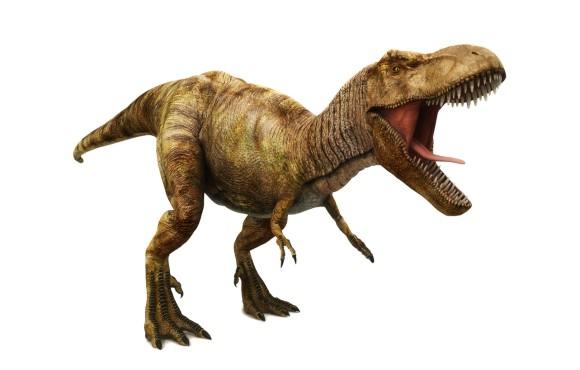 ほらやっぱりね!ティラノサウルスは羽毛でなくウロコで覆われていたことが判明(オーストラリア研究)