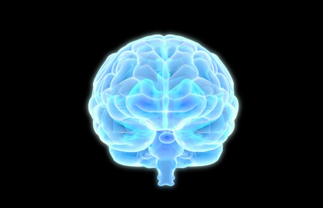 ホムンクルスかな。人工培養したミニ脳を約1年で乳児の脳に成長させることに成功