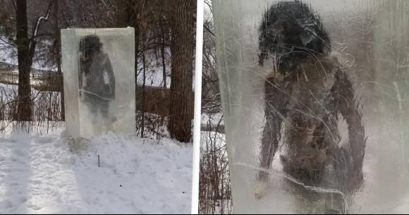 氷の中に原始人!?アメリカで謎のモノリスが出現