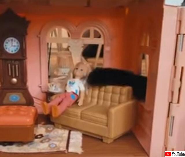 人形誘拐の現行犯としての猫
