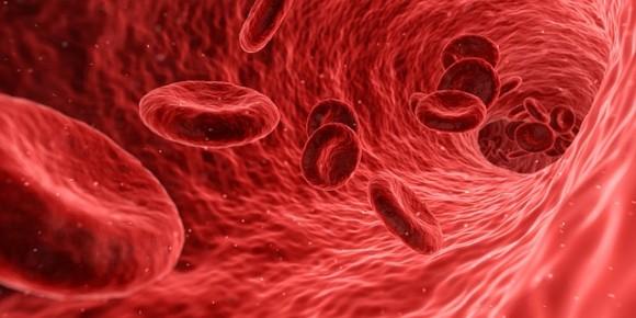 blood-1813410_640_e