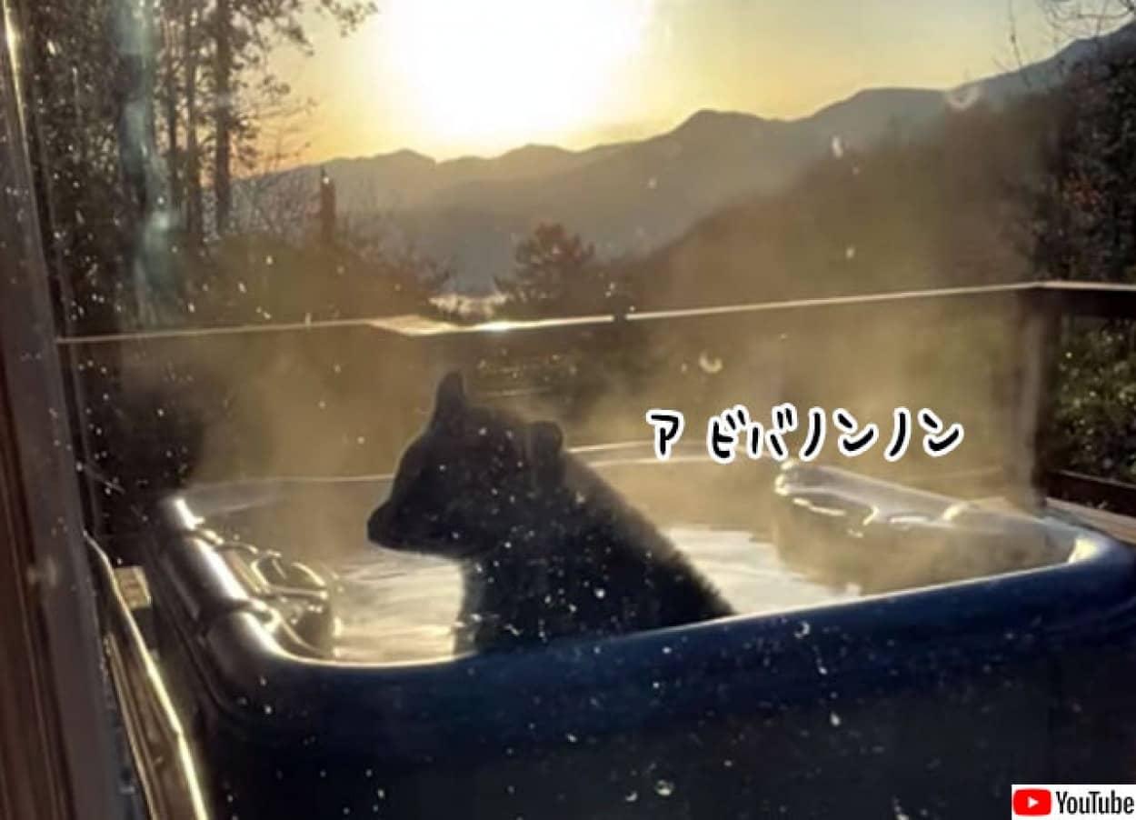 熊が宿泊施設のお風呂でリラックマ