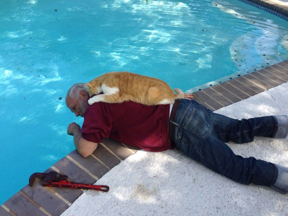猫を愛し、猫に愛された男たち。磁石のようにくっついてる猫とメンズの写真館