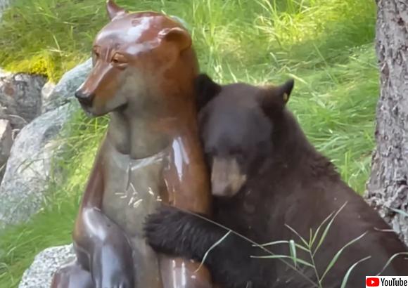 一方通行の愛だっていい!銅像に恋したクマが熱烈アプローチ