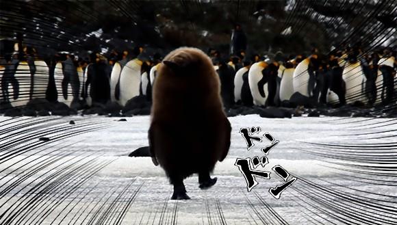ラスボス感がすごいけどヒナだから。独り立ちする気マンマンのキングペンギンの子、我が道を行く