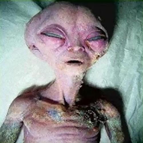 alien-29_e