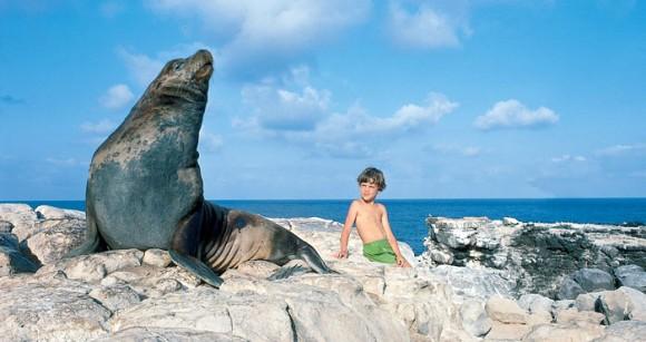 大好きな動物たちと触れ合える、なれ合える。一度は行きたい世界20の魅惑のアニマルパラダイス