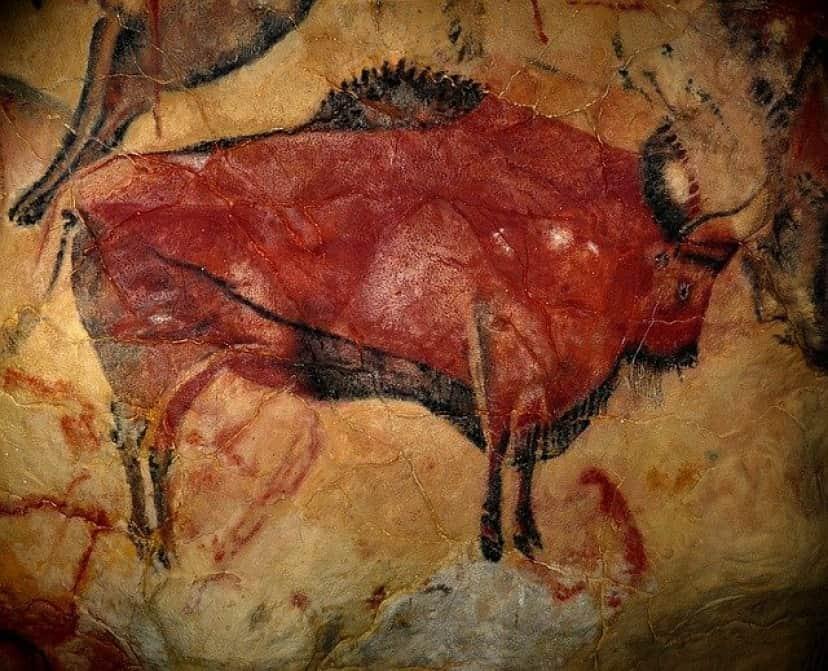 bison-1171794_640