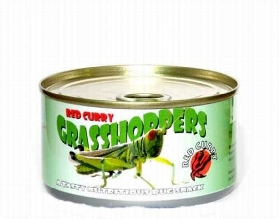 canned_foods_28