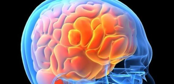 脳に超音波を当てるとやる気がでて気分が良くなる(米研究)