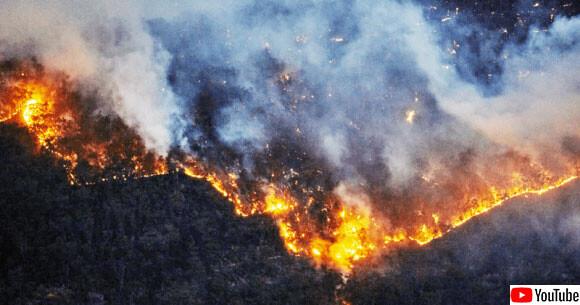 チェルノブイリの立入禁止区域で森林火災。放射性廃棄物保管施設に迫る