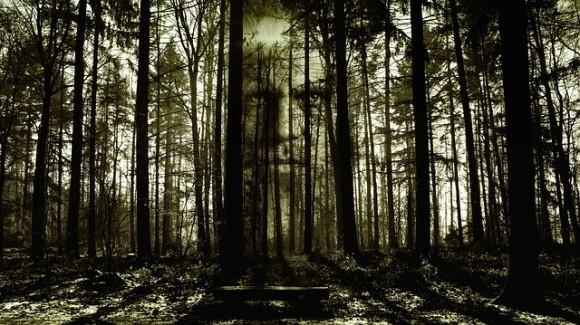 horror-2156302_640_e