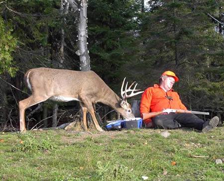 a97299_g187_1-deer