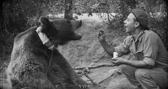 ヴォイテク:戦争に行った兵隊クマ。御褒美は大好物のビール(ポーランド軍)