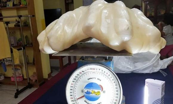 漁師が発見した天然の巨大真珠。縁起物としてとっておいたら、10年後にとんでもない価値に(フィリピン)