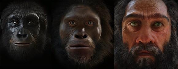 人類の顔の進化をモーフィング。600万年を2分で見られる動画。