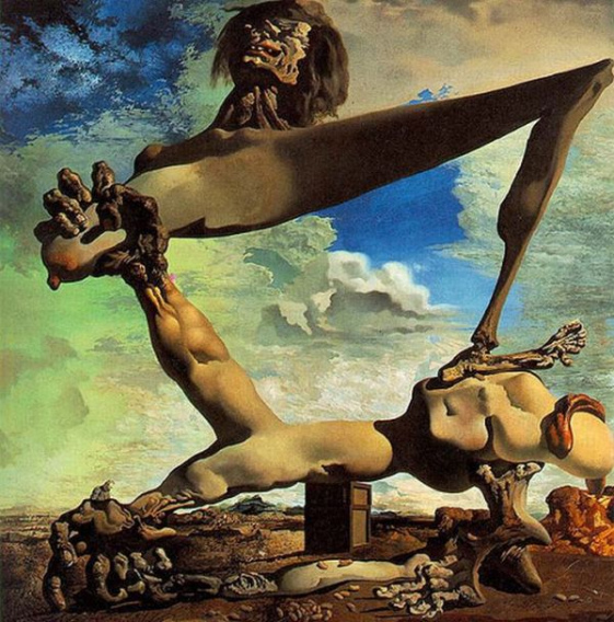 salvador_dali_optical_illusions_13