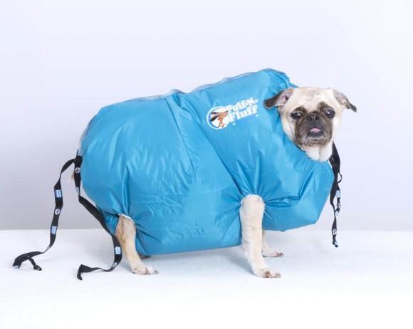 一気に犬毛を乾かします。労力も時間も犬のストレスも軽減できる次世代型犬用ドライヤーが販売中