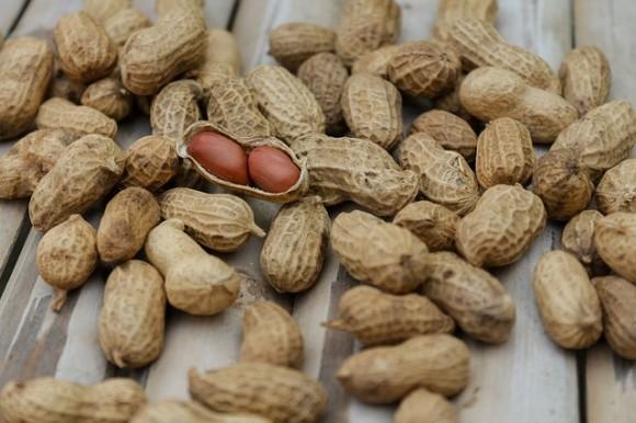 peanuts-1850809_640_e0