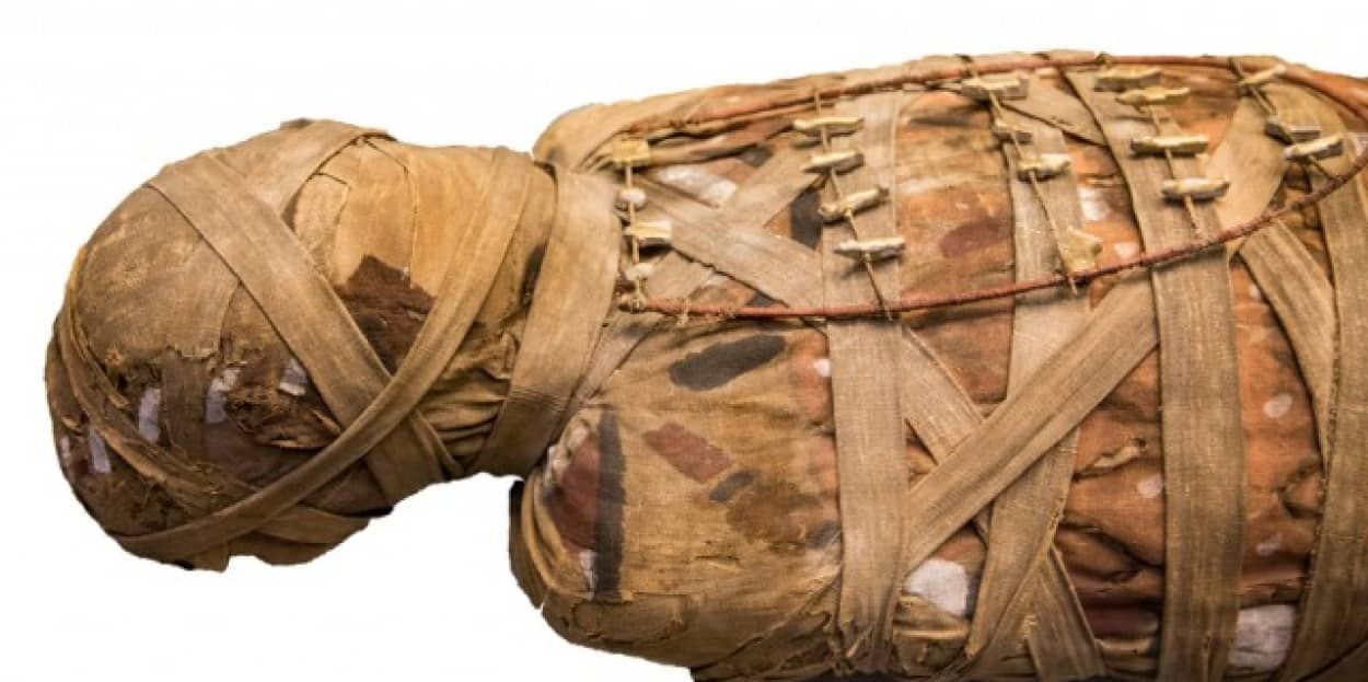 古代エジプトの最も古いミイラづくりのマニュアルが発見される