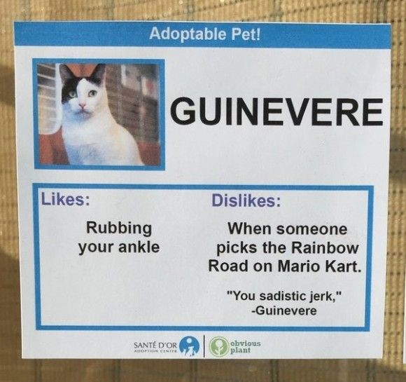 Guinevere_e