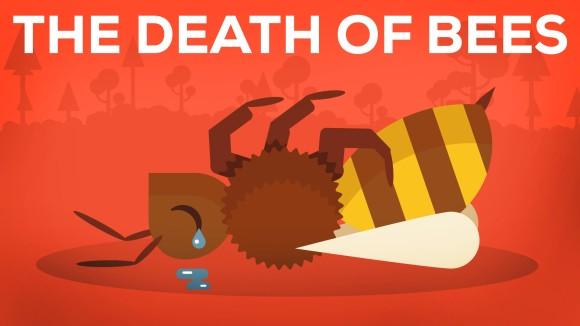 ミツバチは人類にとってとても大切な役目を果たしていた。ミツバチが絶滅したら起こりうる10のこと