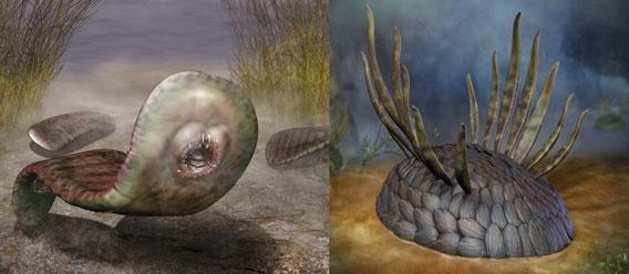 ワクワクアニマルキングダム、魅惑の古代生物復元予想図