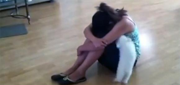 泣いてる!なぐさめなきゃ!泣いている少女を必死に慰めようとする健気な犬