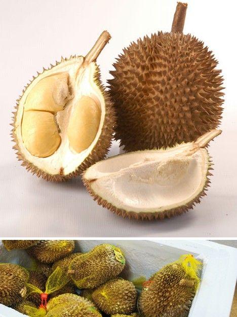 amazing_fruits_9x