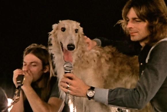 ピンク・フロイドに加入した犬のシーマス。これまでに動物を起用したバンドや楽曲。