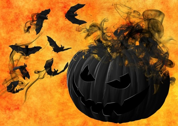 pumpkin-988231_640_e