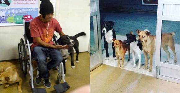 ホームレス男性の診察が終わるまで、入り口で心配そうに見守っていた4匹の犬たち(ブラジル)