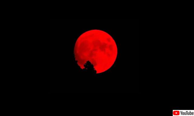 真っ赤に染まる月。ギガ火災が発生中のカリフォルニアの夜空で不気味な満月(アメリカ)