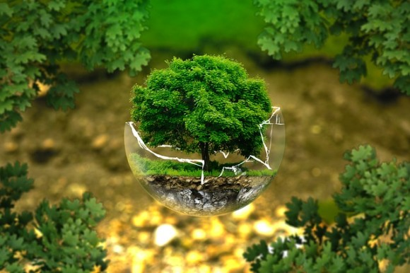 environmental-protection-326923_640_e