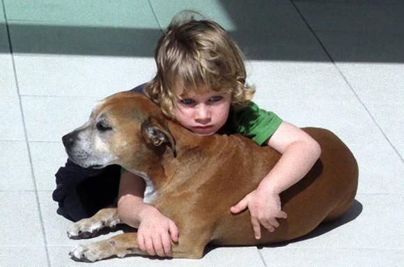 「なぜ犬の寿命は人間よりも短いのだろう?」 大親友だった愛犬がこの世を去った時、少年が語った感動の答え。