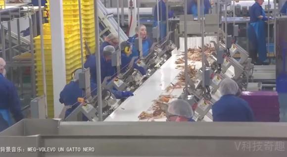 crab12_e