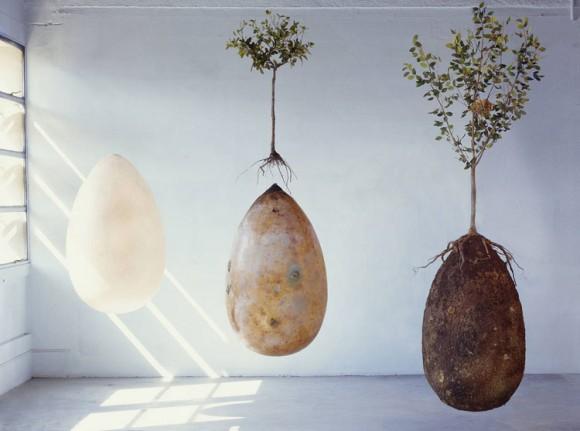 土に還り、樹木の養分となる。遺体をカプセルに入れ木の下に埋める。人間埋葬の新しい形、「追憶の森カプセル」の提案(イタリア)