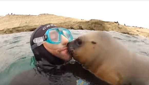 なつきすぎかよ!ダイバーにキスを強要するアシカがいる風景