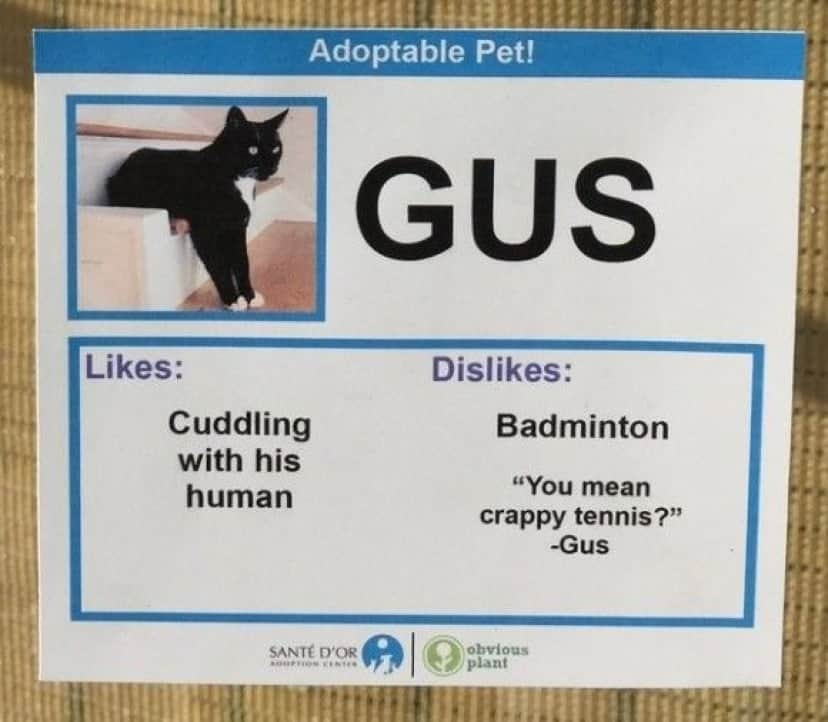 Gus_e